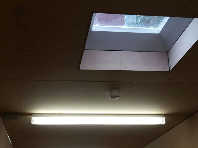 container skylights